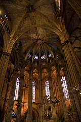 The ceiling of Barcelona cathedral|79