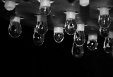 Light bulbs?|446