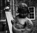Ducks and statue|556